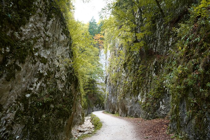 Private Full-Day Hiking Tour in Piatra Craiului National Park