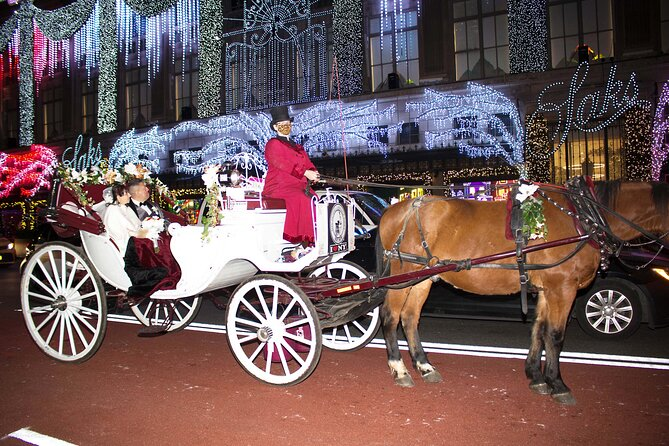 Private Horse Carriage Ride through New York Christmas Lights
