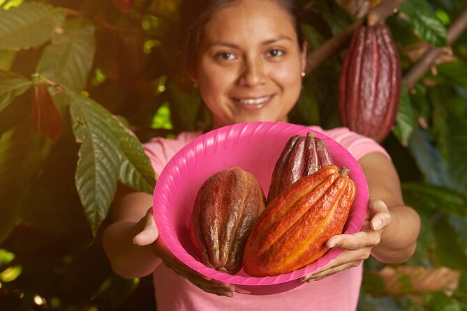 Honey and Cacao Mayan Sanctuary from Cancun and Riviera maya