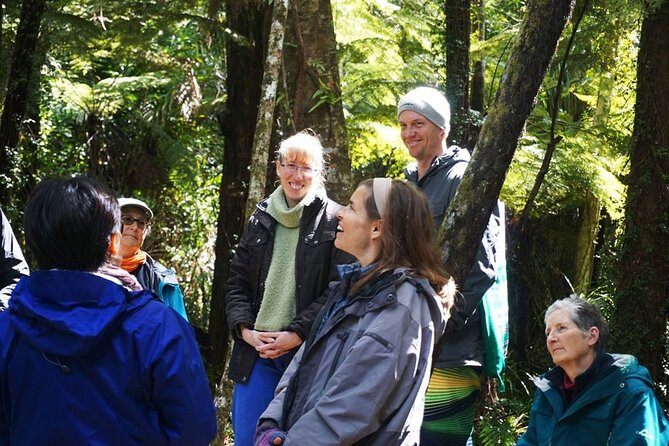 Private Forest Therapy Walk on Waiheke Island