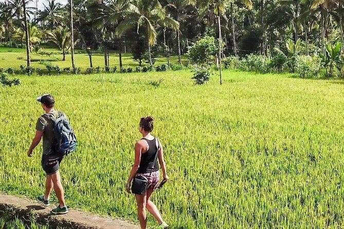 Tetebatu Trekking & Camping Trip 2D1N To The Jungle