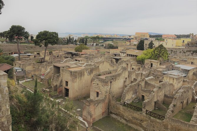 Skip the Line Ancient Herculaneum Small Group Walking Tour with Top Rated Guide