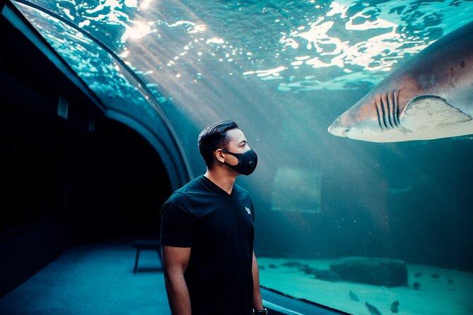Skip the Line: Two Oceans Aquarium Admission Ticket