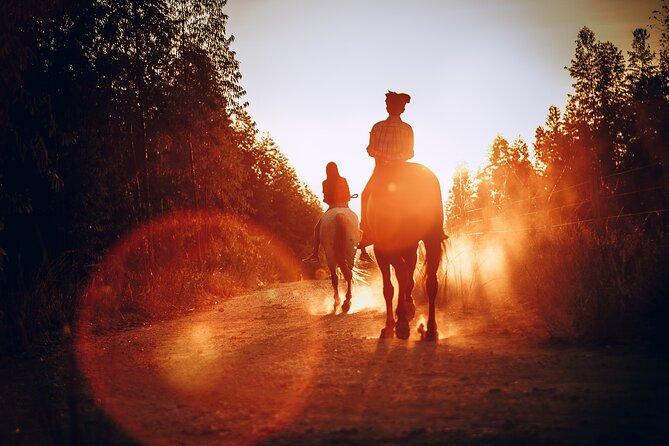1-Hour Horseback Ride in Camp Verde