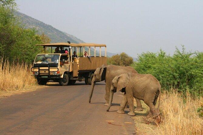 Full-Day Pilanesberg National Park Safari