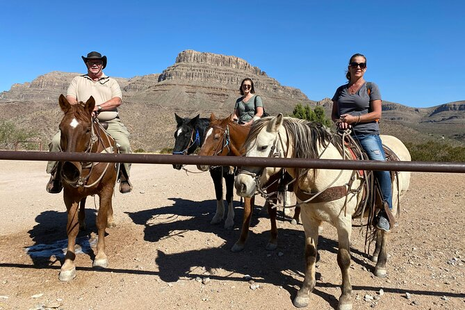 Horseback Riding, Joshua Tree Forest, and Buffalo Tour