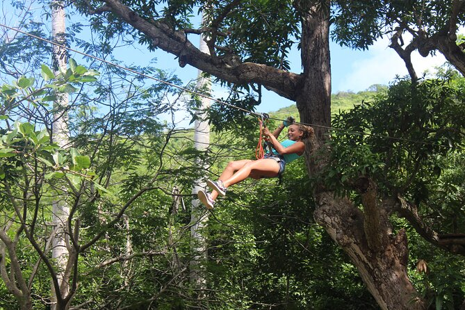 Fly Zone Treetop Adventure at Loterie Farm
