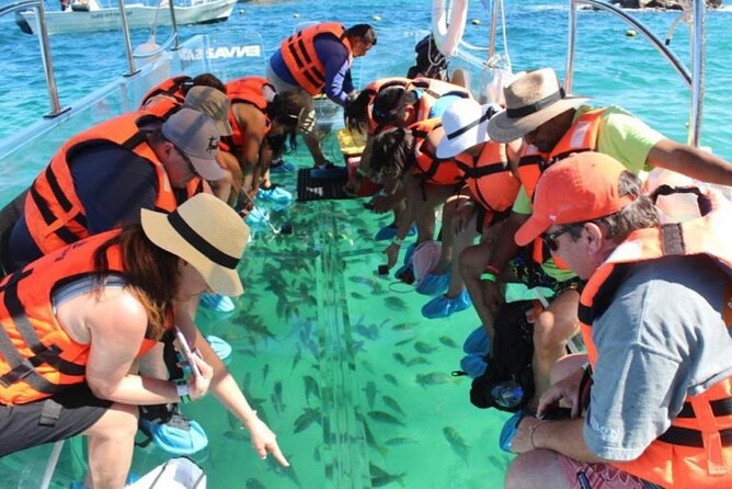 The Amazing Clear Boat Cozumel