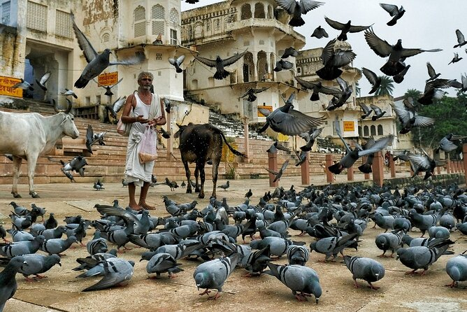 A Day Trip of Pushkar From Jaipur & Back