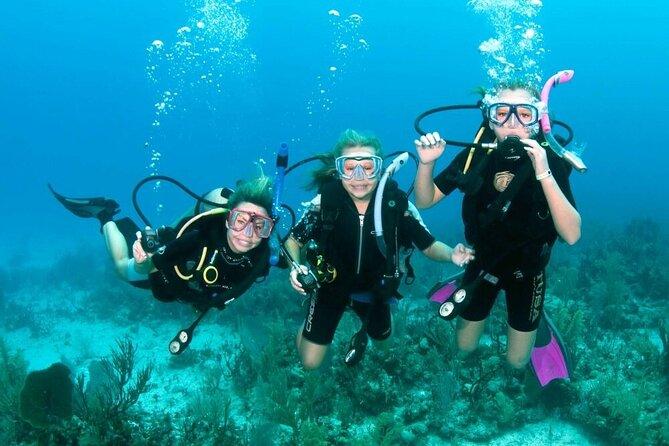 Tiran Island Snorkel & Dive Sea Excursion by Boat - Sharm El Sheikh