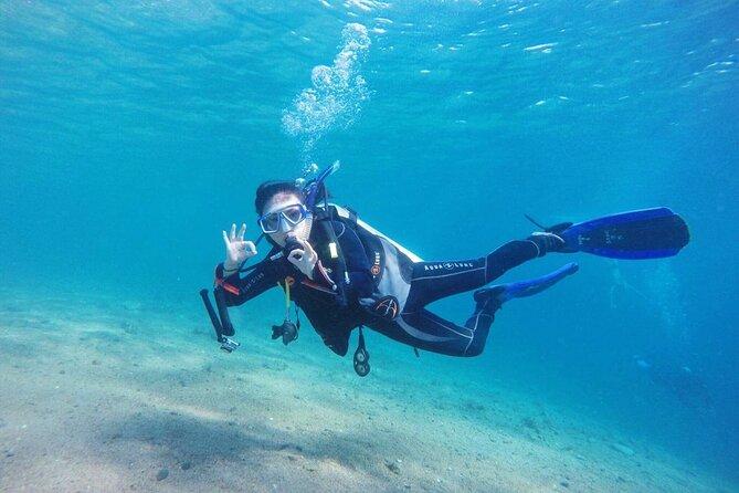 Tiran Island Full Day Snorkeling Sea Trip & intro dive 15 min - Sharm El Sheikh