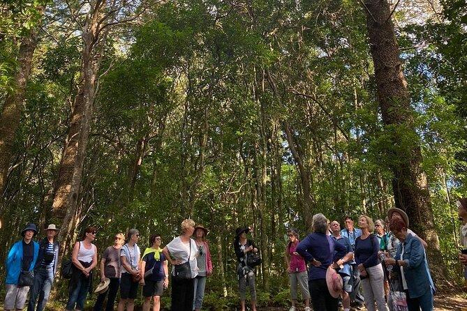Breakfast Bushwalk Tour in Captain Cook's Monument