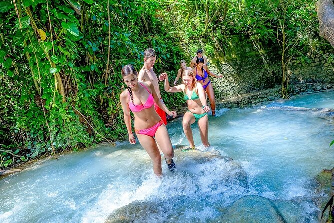 Dunn's River Falls & Luminous Lagoon Guided Tour from Montego Bay
