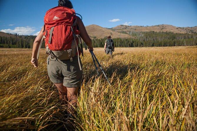 6-day Tour in Yellowstone and Grand Teton