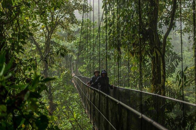 Arenal Selfguide: Mistico Hanging Bridges, La Fortuna Waterfall & Volcano Park