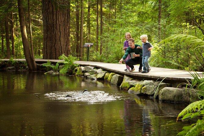 Vancouver Day Trip | Grouse Mountain & Capilano Suspension Bridge Private