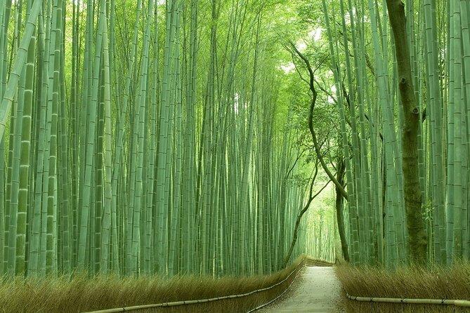 [Virtual Tour] Zoom Viewing Kyoto Arashiyama & Sagano Highlight Tour