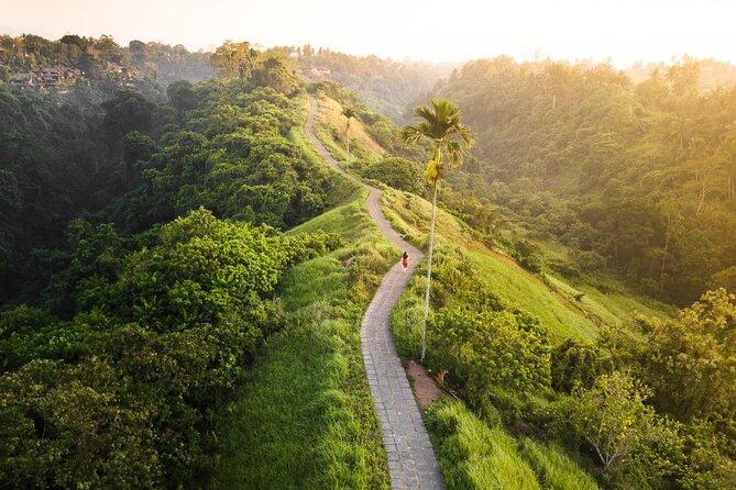 Privat tur: Ubud Rice Paddies Trek med Campuhan Ridge Walk