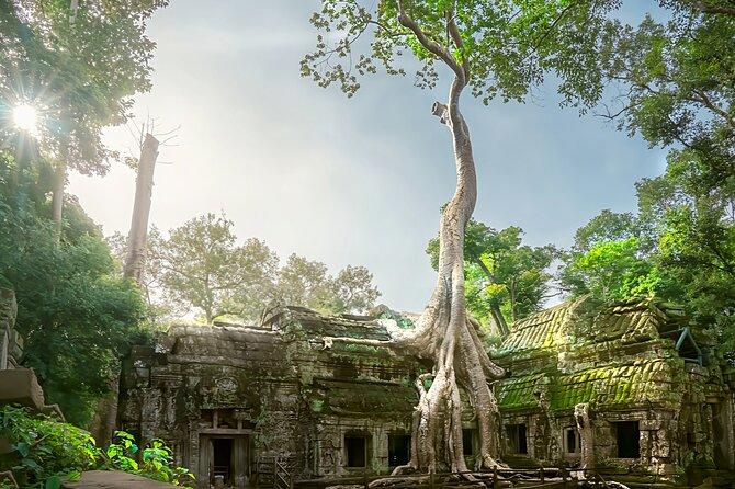 Angkor Temples Tour (Small Group Tour)