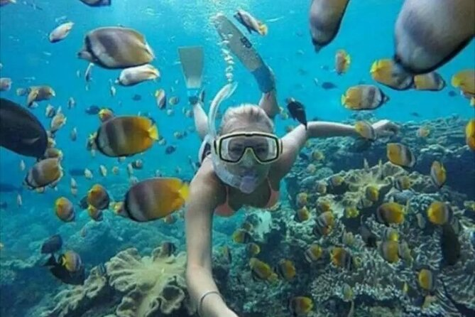 Bali Blue lagoon snorkeling with all inclusive tour