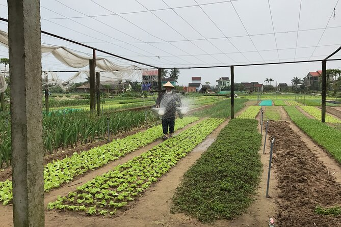 Become a Farmer at Tra Que Vegetable Village included cooking class and Foot Massage