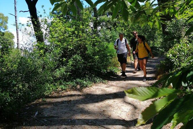 Secrets of Sintra/Cascais Natural Park – Fairytale Tour