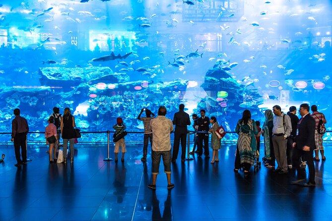 Dubai Underwater Zoo & Mall Aquarium Entrance (E-Ticket )