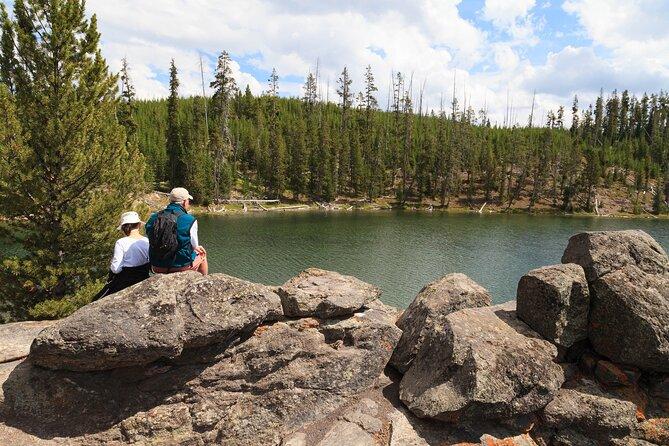 Yellowstone Walking Safari Full Day Private Tour from Bozeman