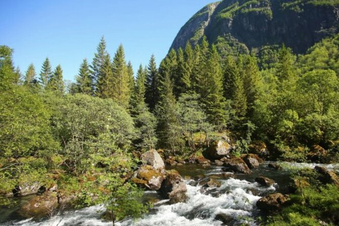 Bergen to Hardangerfjord Fjord Adventure
