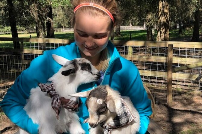 Goat Yoga Experience at S-Farms in Dade City