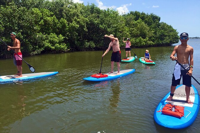 Full-Day Paddle Board Rental in Naples, Florida