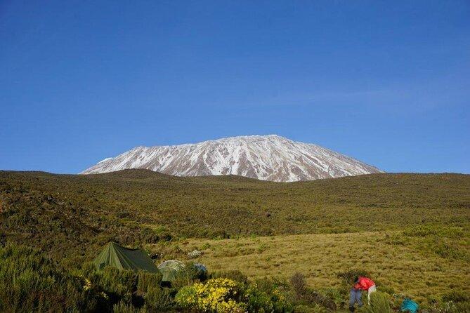Mt.Kilimanjaro Shira Plateau one day hike