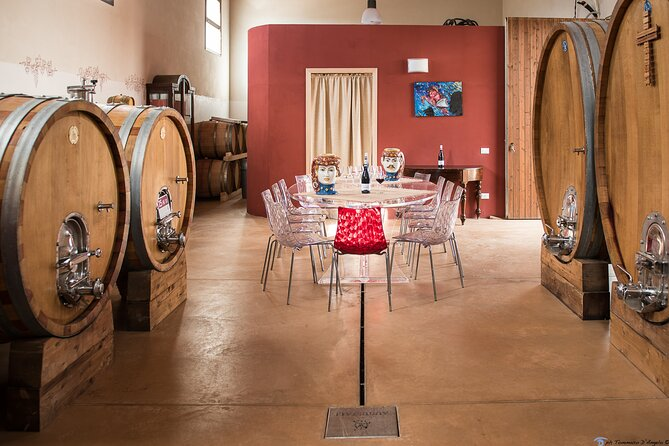 Visit to the cellar and vineyard with wine tasting and typical brunch