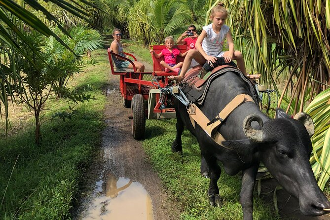 Palm Oil Tour With Water Buffalos