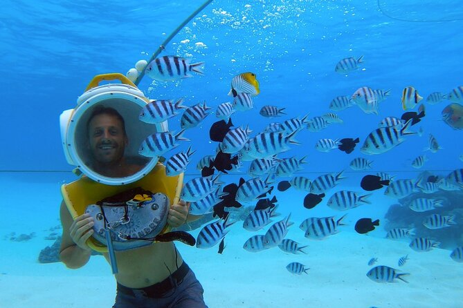 Aqua Safari Introductory Helmet Dive (Underwater Walk)