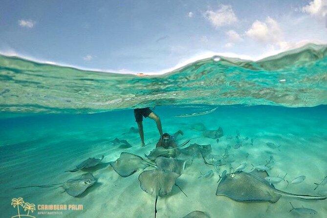 Excursão Especial Snorkel