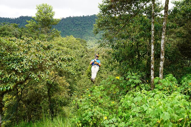 Full-Day Private Tour of Mindo Cloud Forest