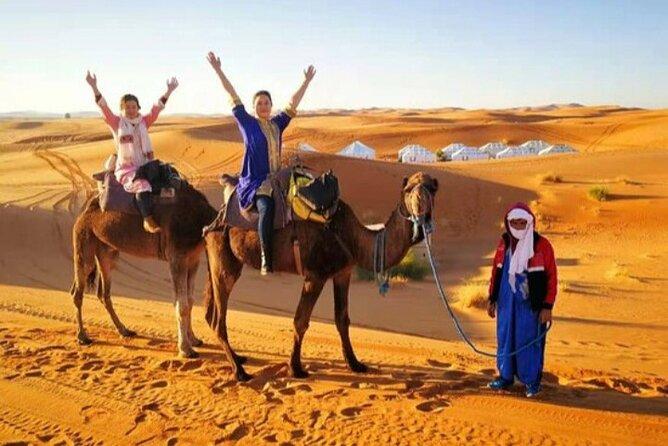Erg chebbi 1 night camel trekking in Merzouga