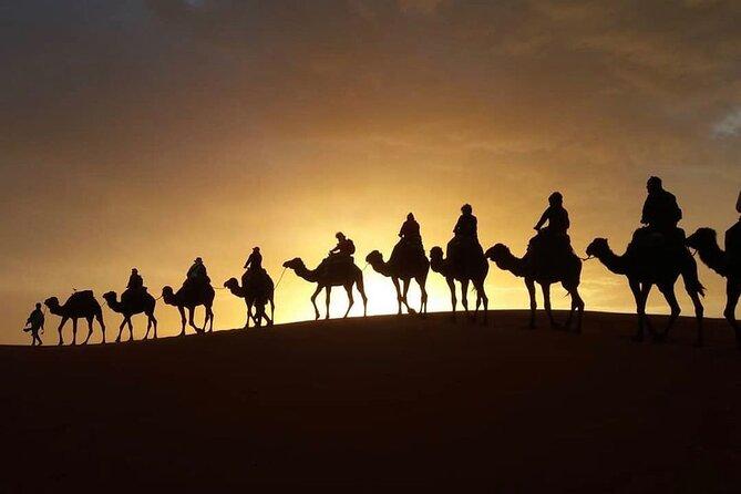 3 days desert tour from Marrakrch to Fes