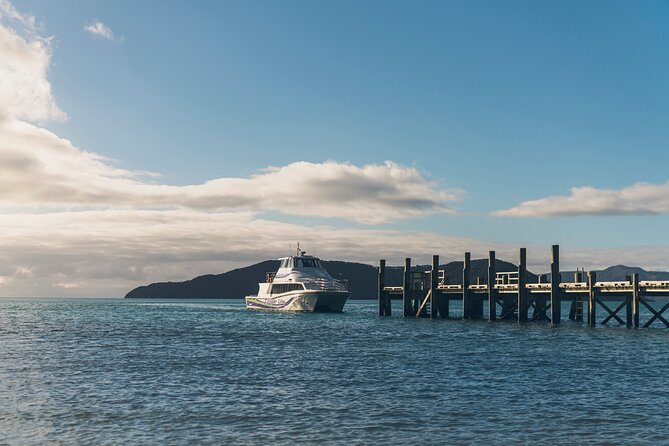 3 Hour Marlborough Sounds Delivery Cruise
