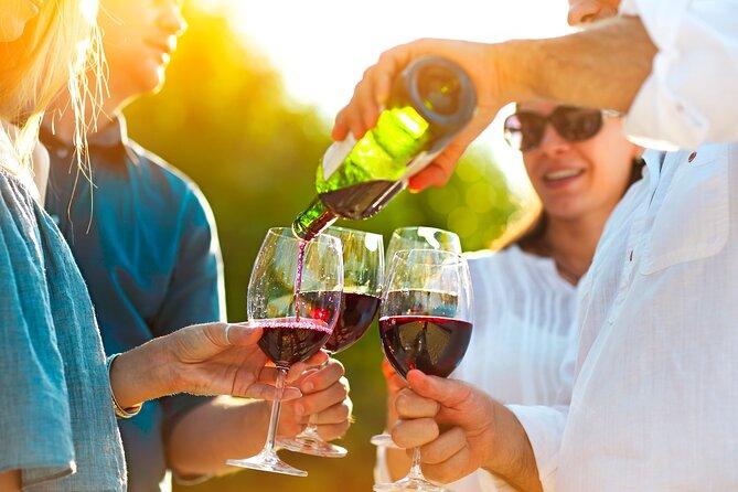 All-inclusive Morning Wine Tour in Orange