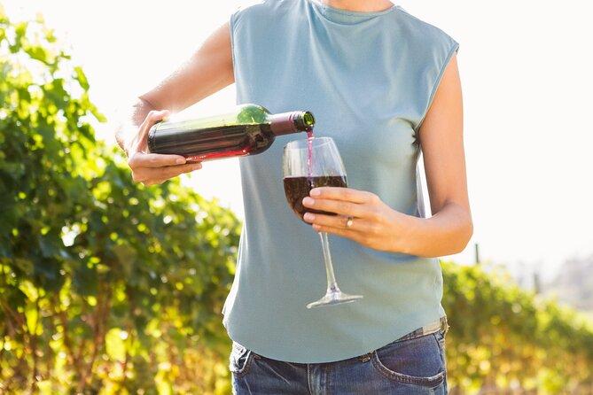 Vino Venture: Explore With A Local - Troodos Mountains thru Wine!