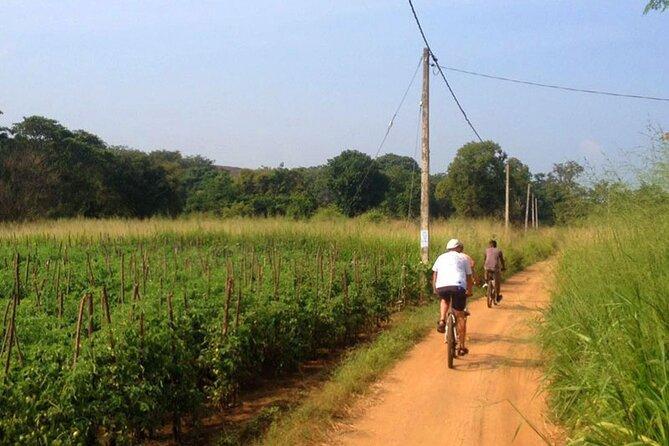 Sigiriya Cycle Safari Tour From Sigiriya