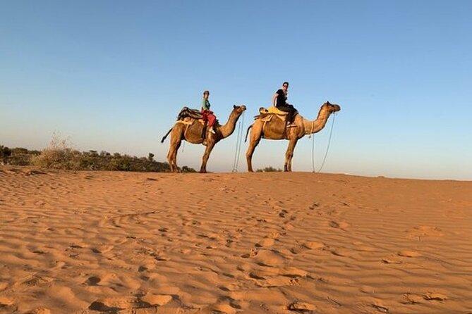 Camel Safari Day Trip From Jodhpur