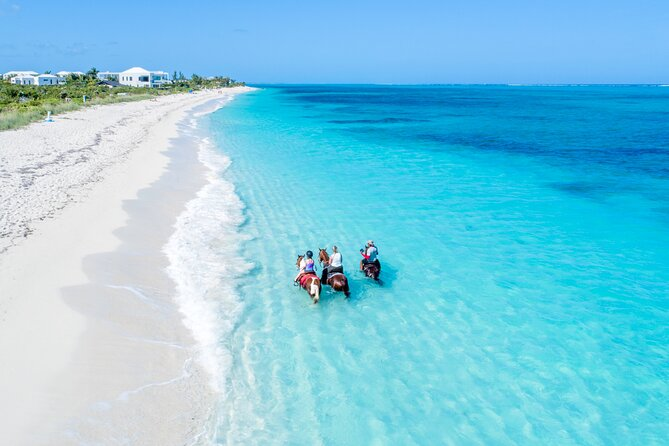 Private Horseback Ride and Swim in Turks and Caicos Islands