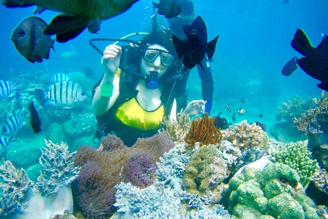 Island Hopping Plus Diving