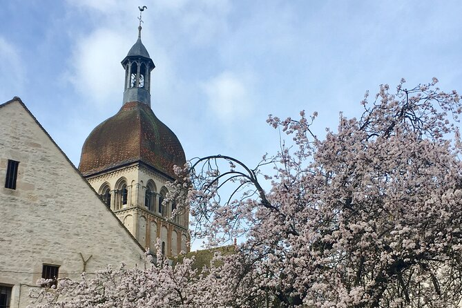 Small group guided tour - Beaune 2h