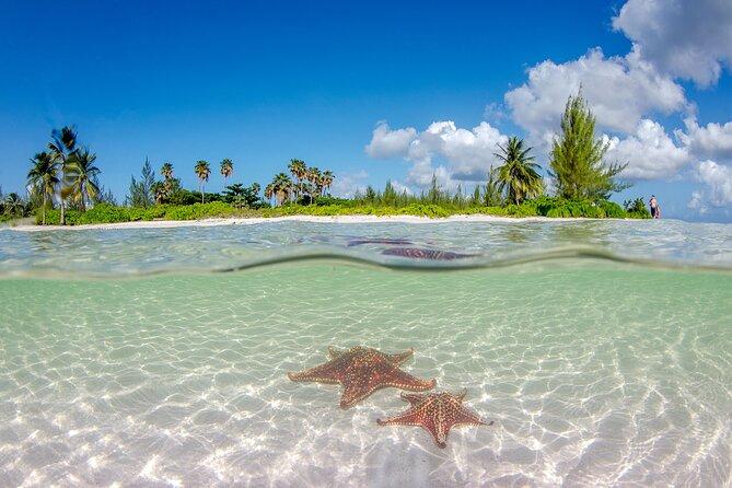 Half Day Bioluminescent Boat and Starfish Beach Tour in Grand Cayman