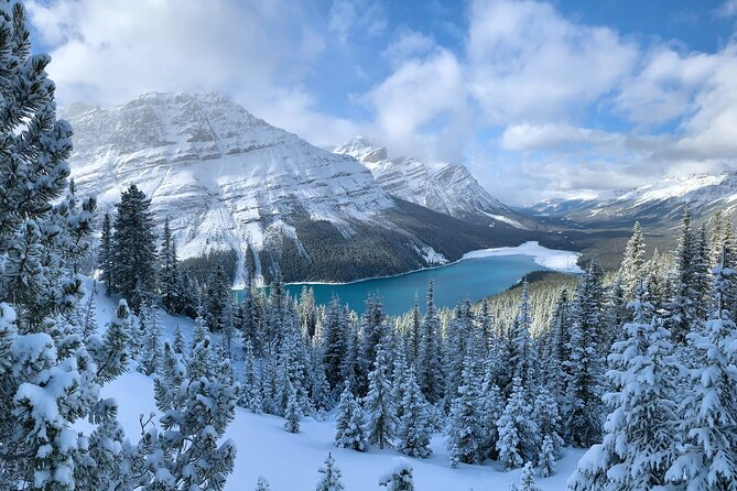 Private Tour for 1 to 10 guests of Lake Louise and the Icefield Parkway