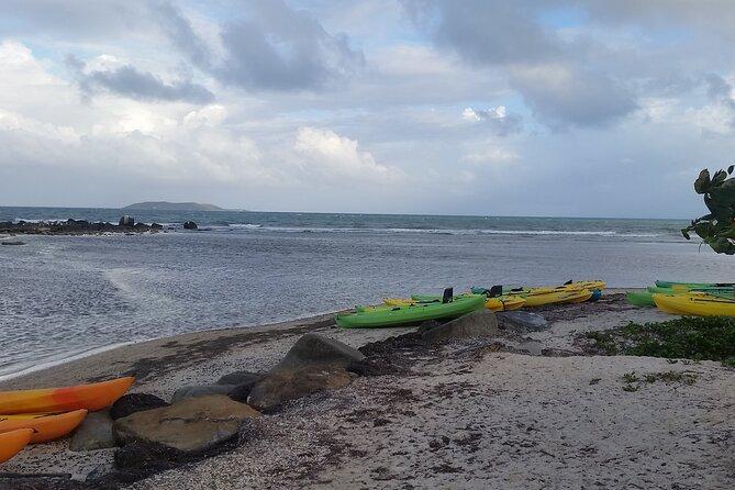 Bio Bay Night Kayak Experience at Fajardo!